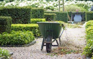 Gärtner bei der Arbeit | Immobilienmanagement