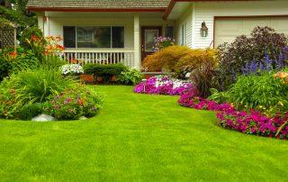 Garten-Landschaftsbau | Immobilienmangement